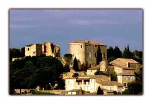 Merveilleux château de Venejan