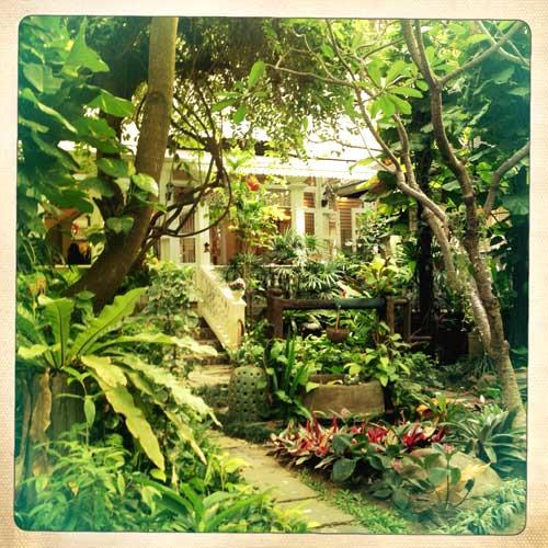Le jardin - salon de thé du Siam Céladon